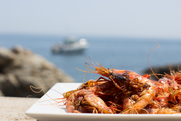prawns in costa brava
