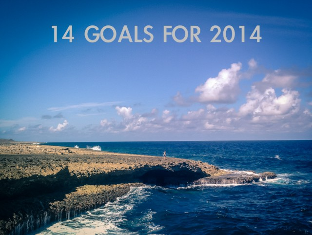 14 goals for 2014