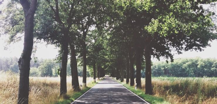 Warum niemand niemals nie nach Brandenburg fahren sollte