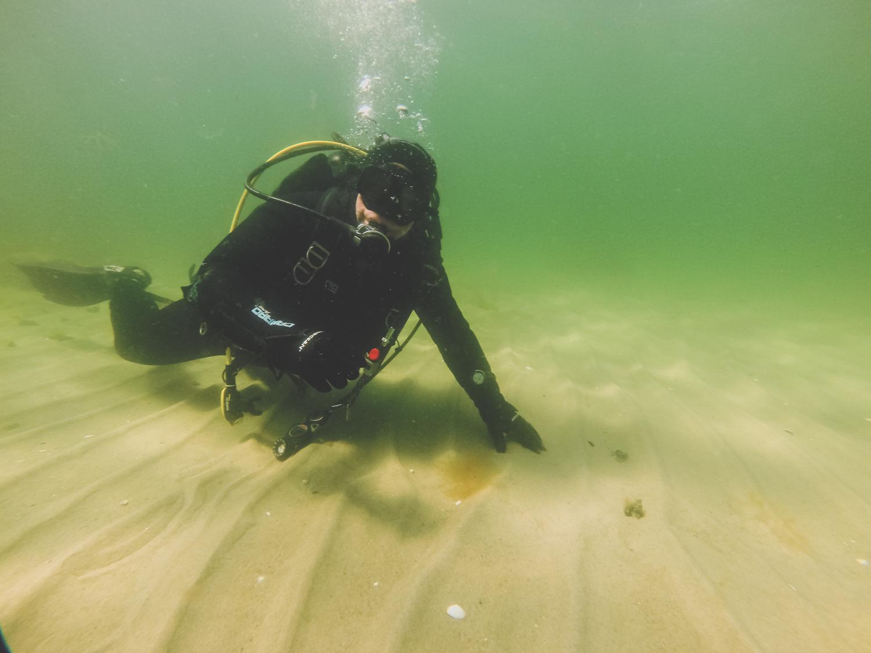 Tauchen Ostsee Kühlungsborn