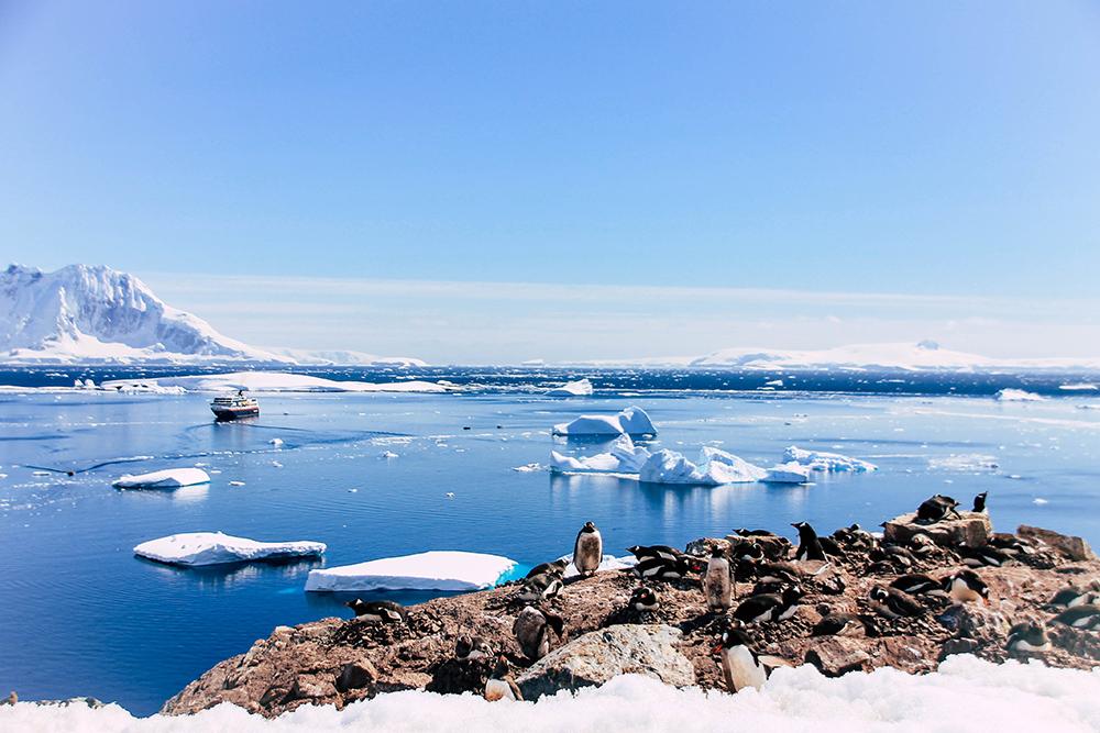 Blick von Cuverville Island auf die Antarktis