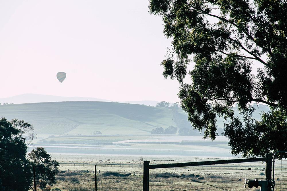 Heissluftballon im Yarra Vallye