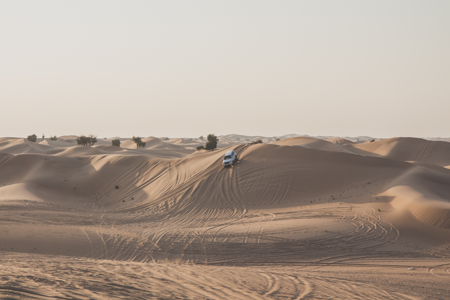 dune bashing abu dhabi, things to do in abu dhabi